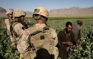 U.S Troops watch Taliban farmers grow and harvest opium. In some case they protect the farmers...