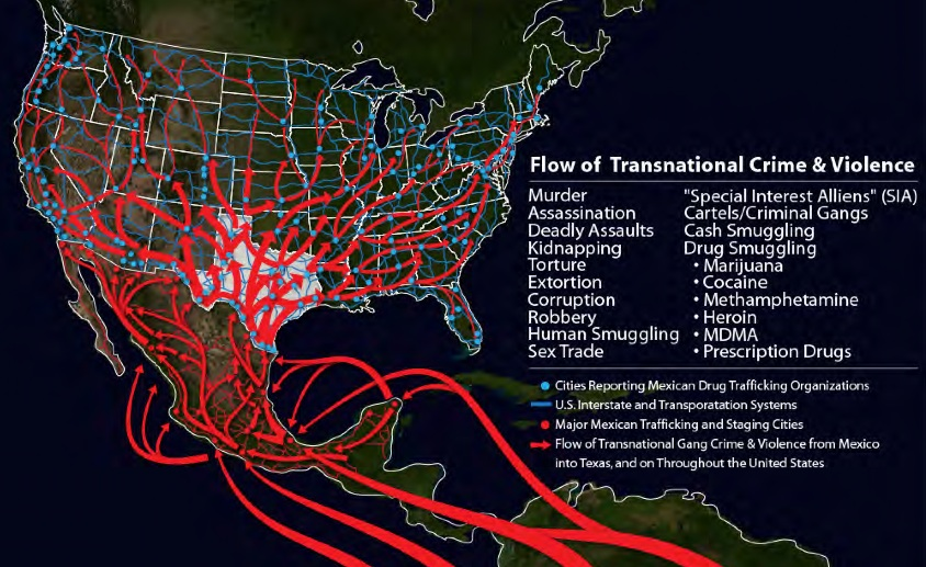 Criminal Cartel Organizations Are Hosting Themselves In US - 2013 crime map us