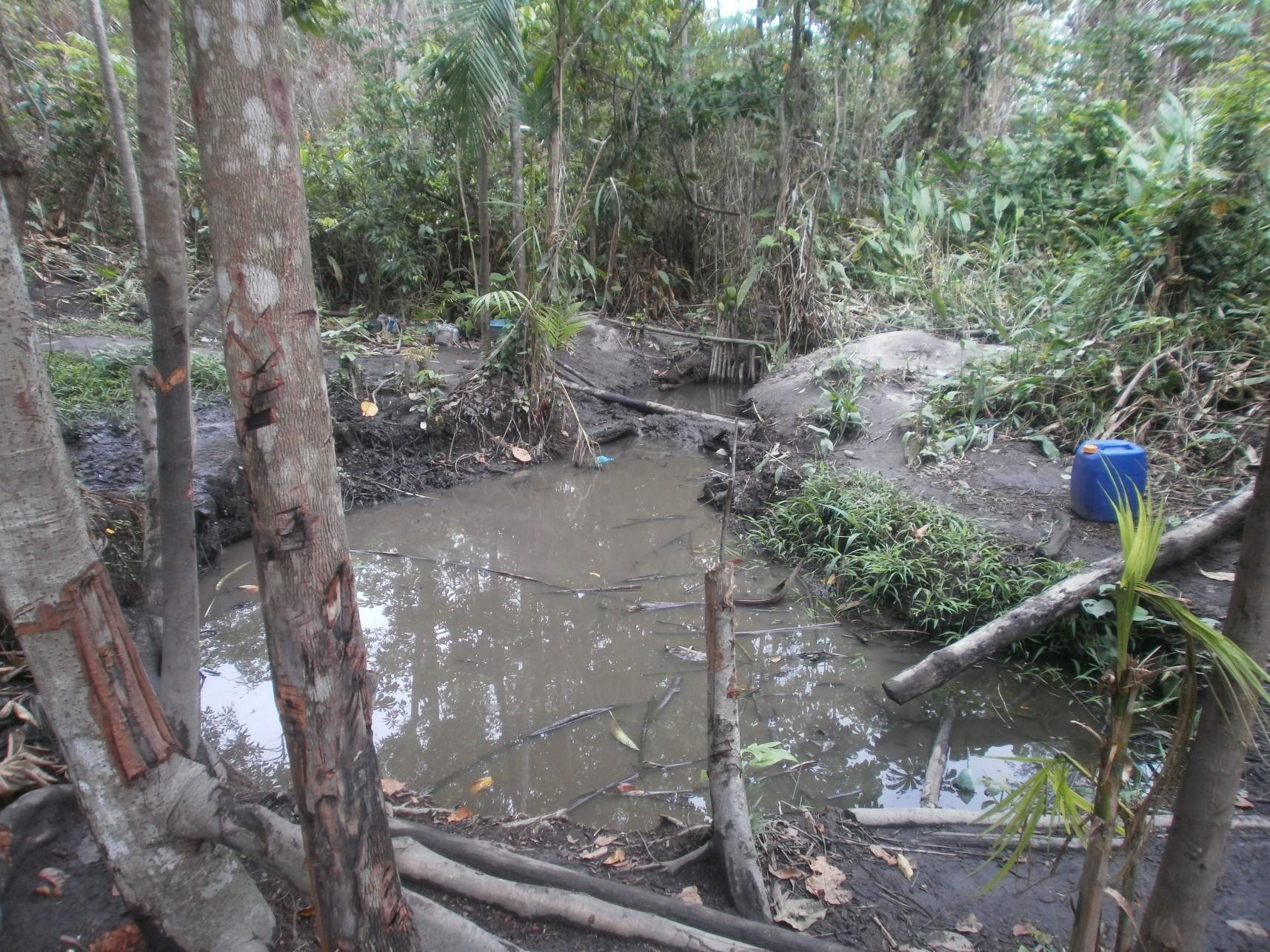 04) Sickening 'drinking' water source