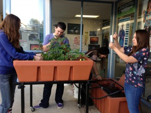 Photo Courtesy of Grants for Plants Foundation and The Aquaponic Source